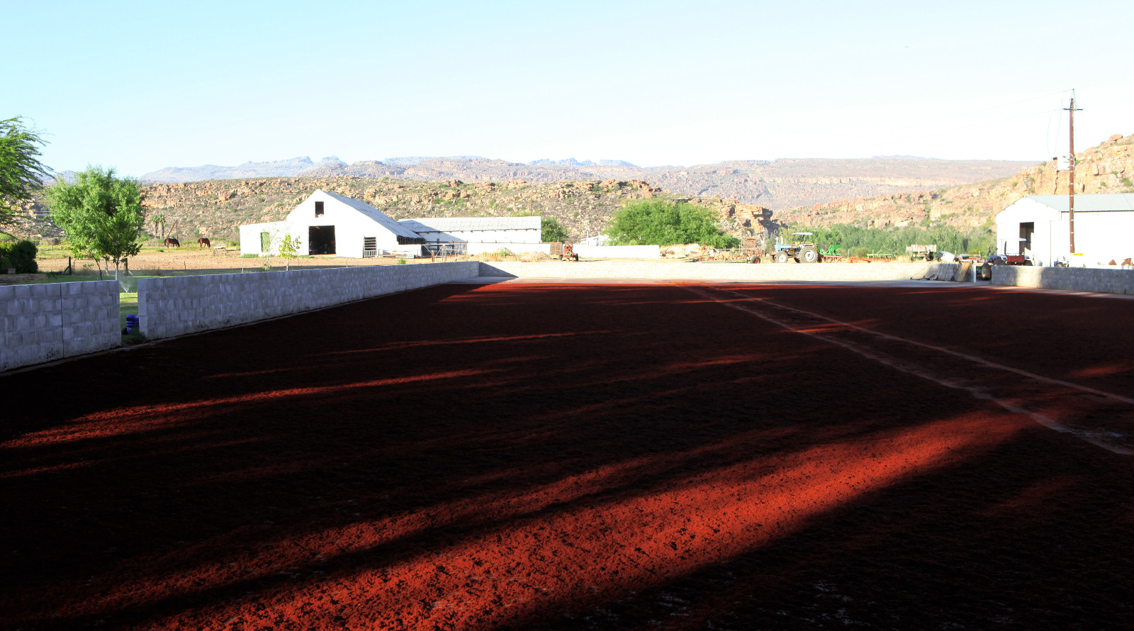 How Rooibos is processed