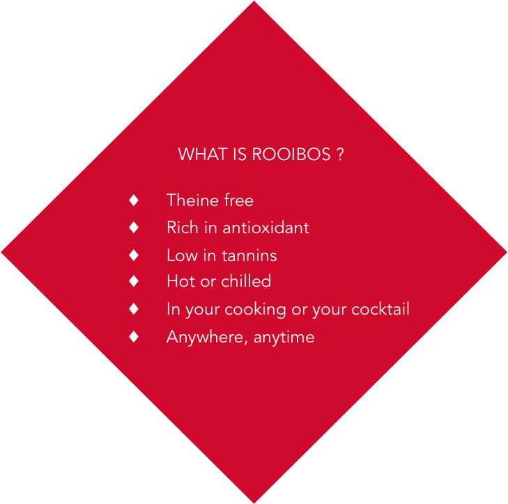 What is rooibos